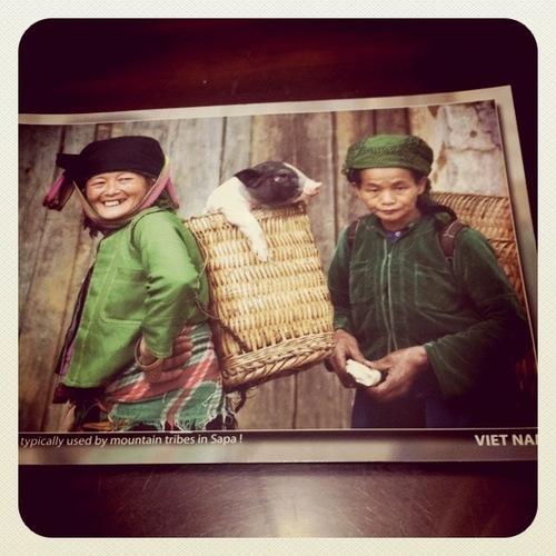 ベトナム ひとり旅 山岳民族が住む街サパ
